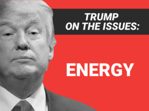 Energy and the Administration:  Wins – Yes, Style Points – Nope